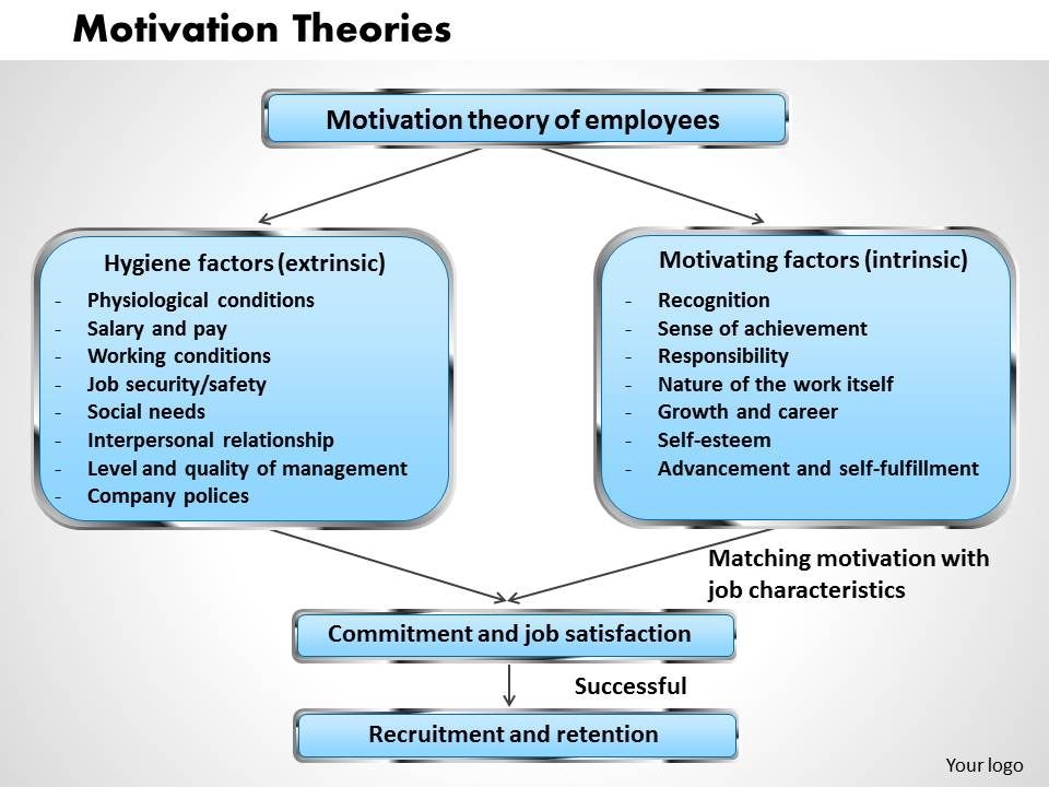 self determination theory and work motivation pdf