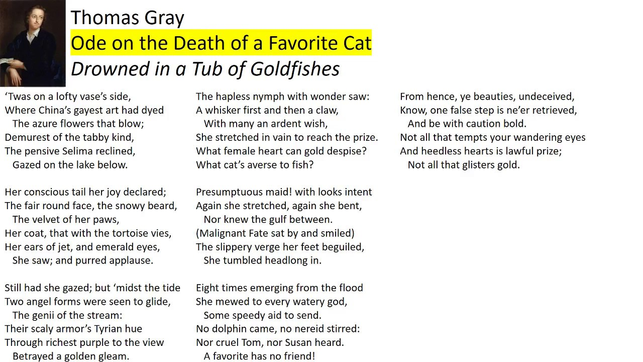 ode on the death of a favorite cat pdf