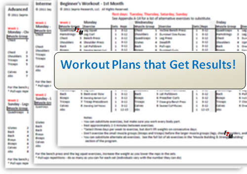 lean muscle workout routine pdf
