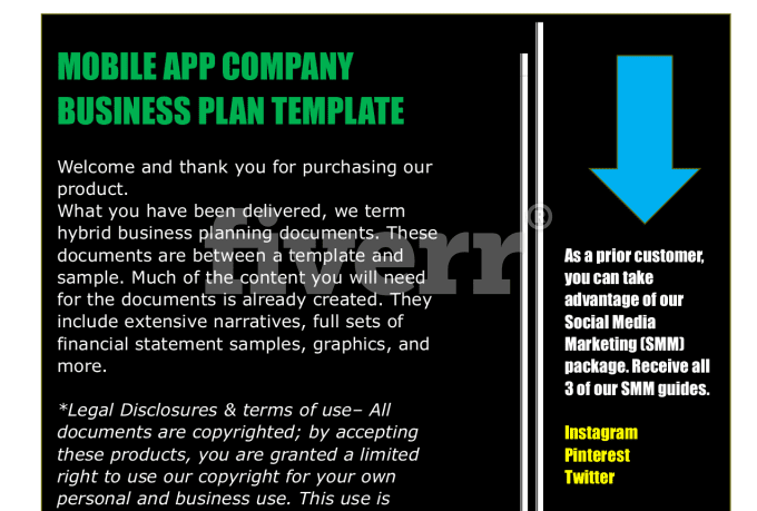 holding company business plan template pdf