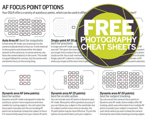 photography tutorials for beginners pdf