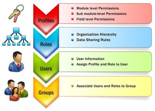 functions of rules and the roles management summary pdf